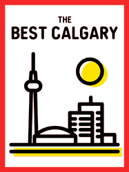 the best calgary seal for top videographers in Calgary